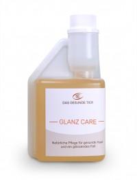 glanz-dyn - 100 ml