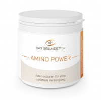 Amino Power - 300 g